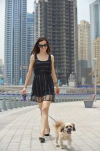 Walking Small Dog