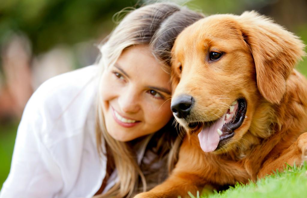 Dog with good teeth